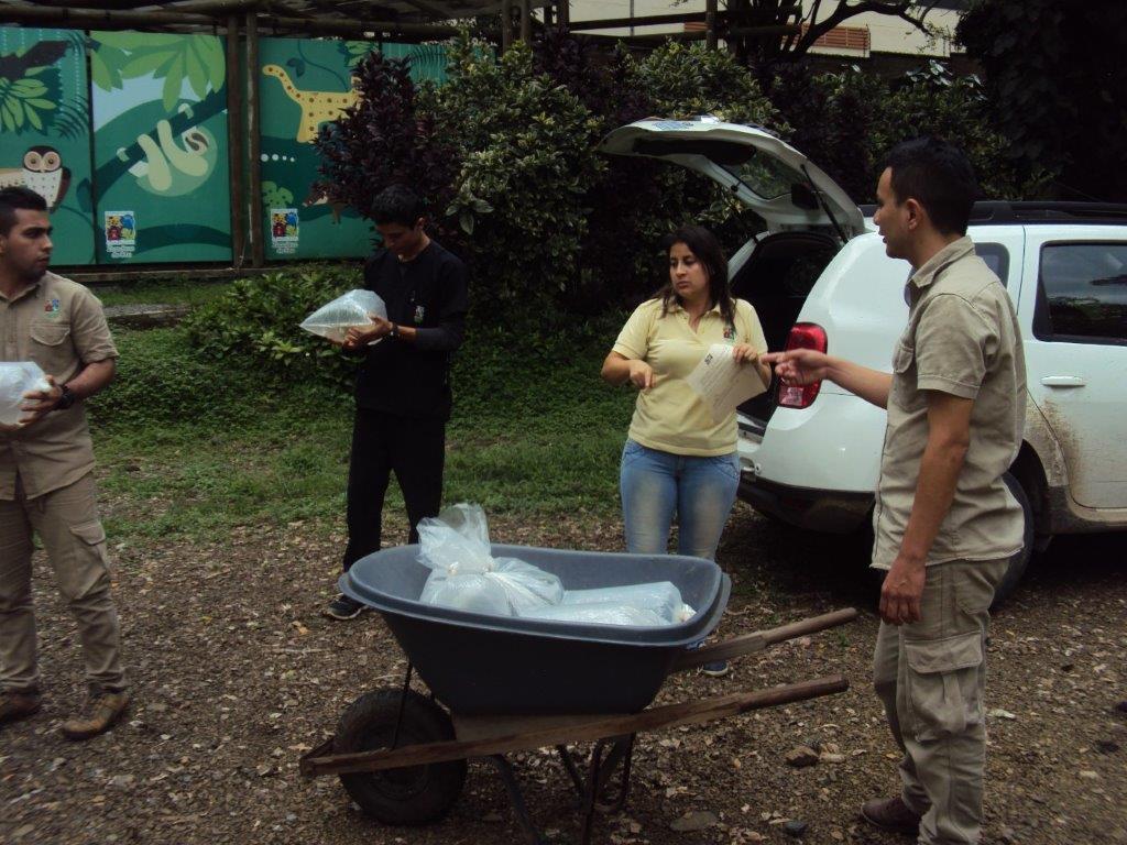 La CVC decomisó 13 peces exóticos en el municipio de Tuluá