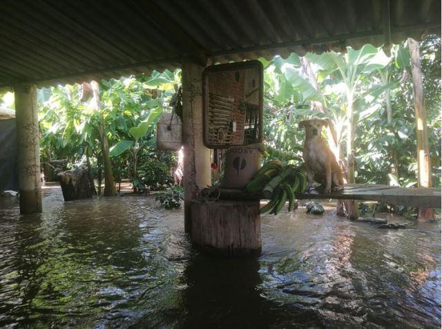 46 familias de Mandivá damnificadas por desbordamiento del río