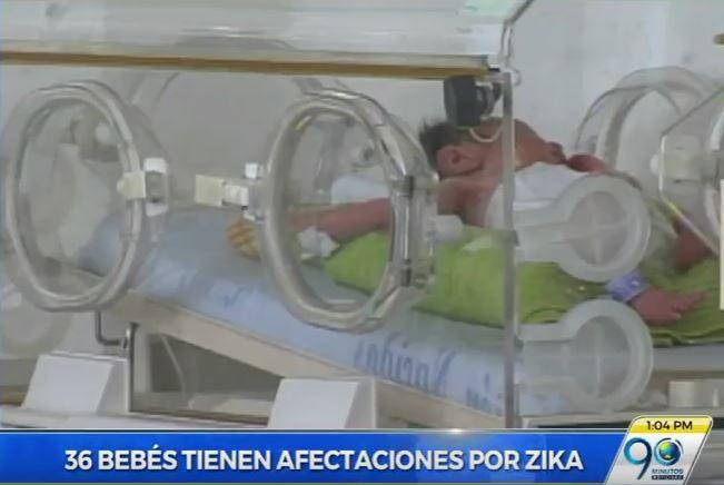 En observación 36 bebés que nacieron cuando sus madres padecían Zika