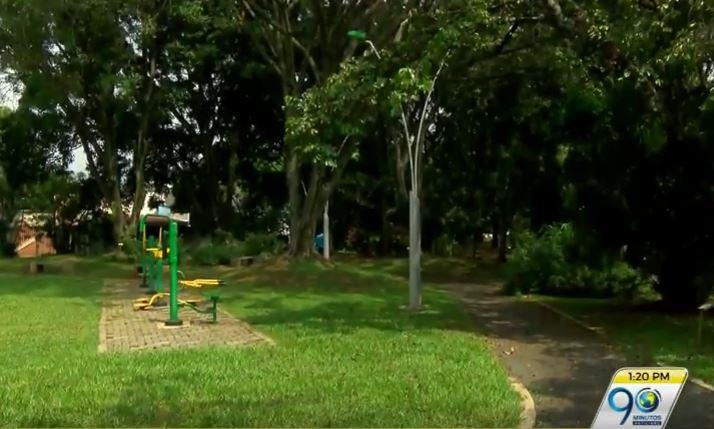 Dagma crea plan pionero en la capital del Valle de silvicultura