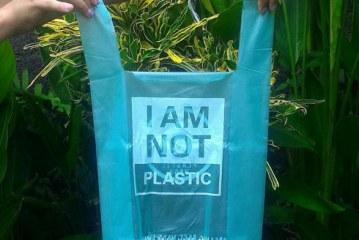 Conozca las nuevas bolsas hechas con fibra vegetal que se disuelven en el agua