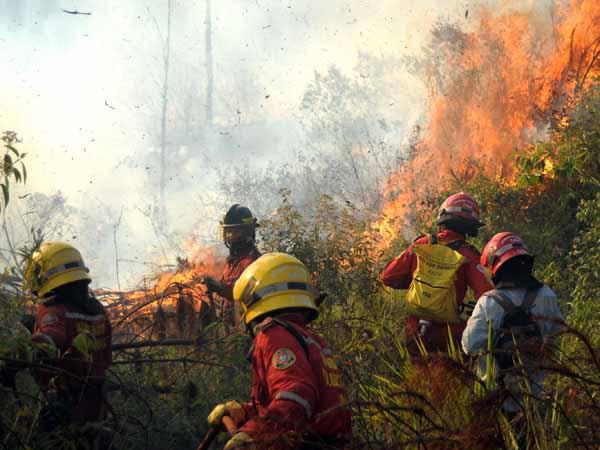 Alerta roja por incendios forestales en el Valle del Cauca