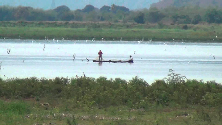 Laguna de Sonso es oficialmente un área protegida