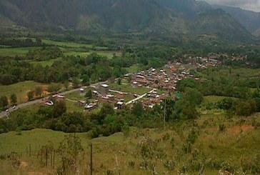 Descubren centro de almacenamiento de marihuana en Caloto, Cauca