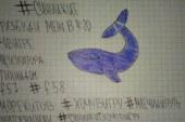 Dos intentos de suicidio en Palmira serían debidos al juego macabro de 'La ballena azul'