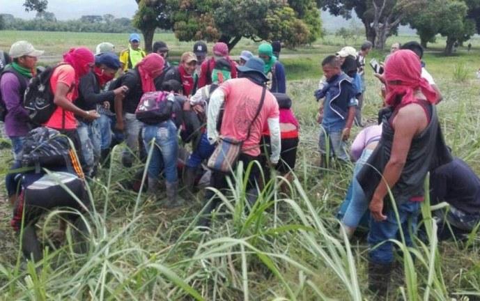 Un indígena muerto y tres heridos dejan enfrentamientos en Corinto, Cauca