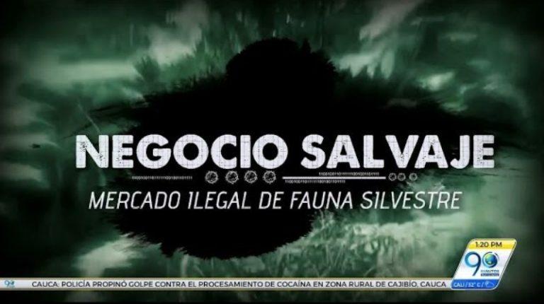 Negocio Salvaje: Mercado ilegal de fauna silvestre