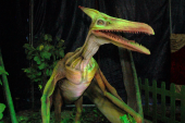 Dinosaurios mecánicos de entre 12 y 14 metros de altura se tomaron a Cali