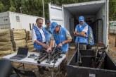ONU ya tiene en sus contenedores el 60% del armamento de las Farc