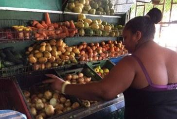 Desde mediados de diciembre, se congelan precios a 140 productos de la canasta familiar