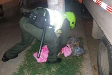 Investigan si bebé encontrada en Desepaz sería de mujer hallada en bolsa plástica