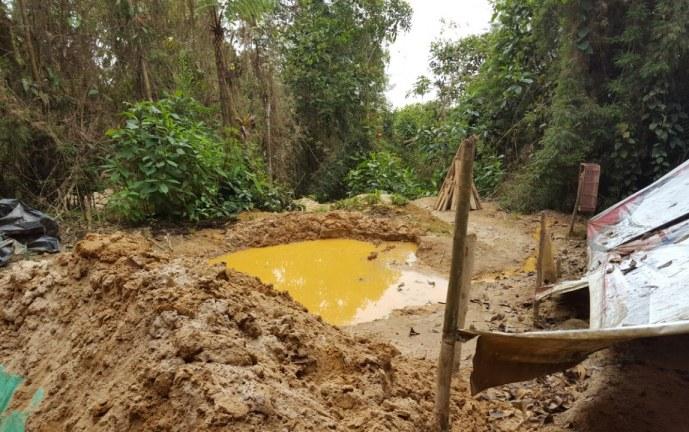 Cárcel a 18 personas por daño ambiental en zona protegida de Buenaventura