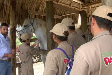 Campesinos aledaños a Zonas Veredales se graduarán de técnicos agropecuarios