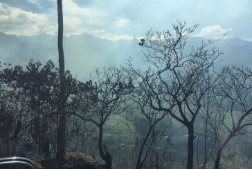 Autoridades de Cali dan recomendaciones para evitar incendios forestales