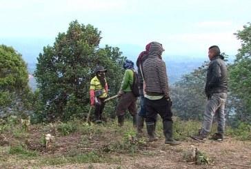 Indígenas Nasa continúan con la toma de una finca en Caldono, Cauca