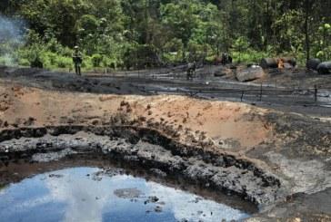 Destruyen dos refinerías ilegales donde se almacenaba petróleo robado en Tumaco