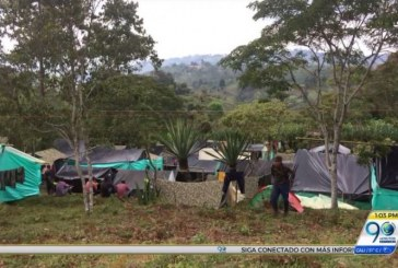 Excombatientes de las Farc están desertando de las Zonas Veredales: Henry Acosta