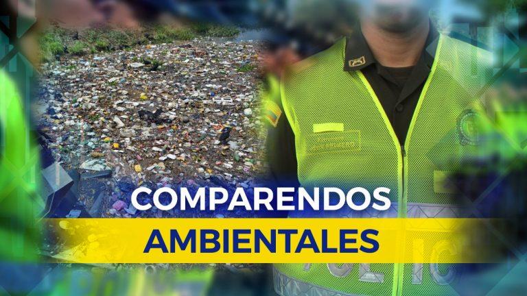 autoridades-impuesto-ochenta-y-siete-comparendos-ambientales-corrido-año-23-10-2017