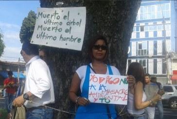Caleños protestan contra intervención de árboles en Autopista Suroriental