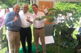 Con el programa ReverdeC fue sembrado el árbol un millón en el Valle del Cauca