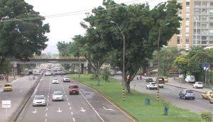 Dagma respondió cuestionamientos de la Personería sobre árboles de la autopista suroriental