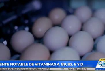 En Día Mundial del Huevo, avicultores del Valle promueven labor social con este alimento