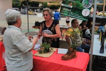 En imágenes: el Mercado Agroecológico en la plazoleta Jairo Varela