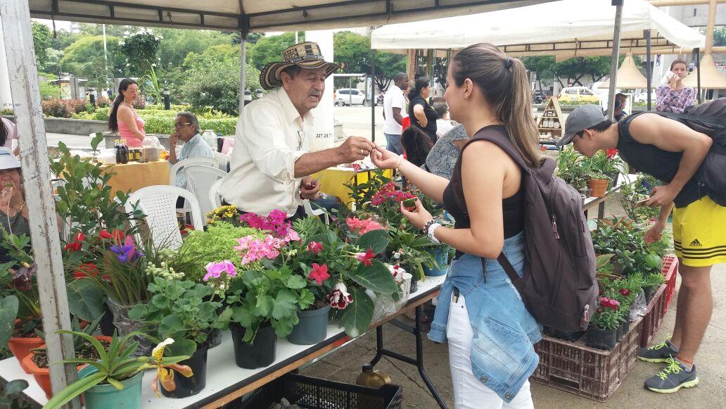 Del campo a su mesa: Mercado Agroecológico vuelve a la Jairo Varela