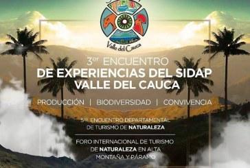 Negocios verdes: turismo de naturaleza y manejo de áreas protegidas