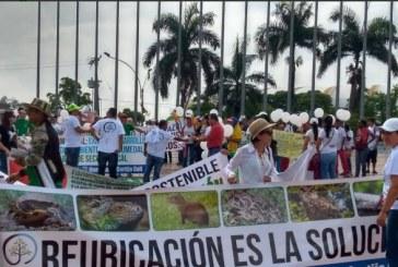 Habitantes de Valle del Lili marcharon en protesta contra obras de Terminal Sur del Mío