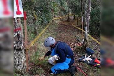 Avanzan labores de desminado en áreas rurales del Valle del Cauca