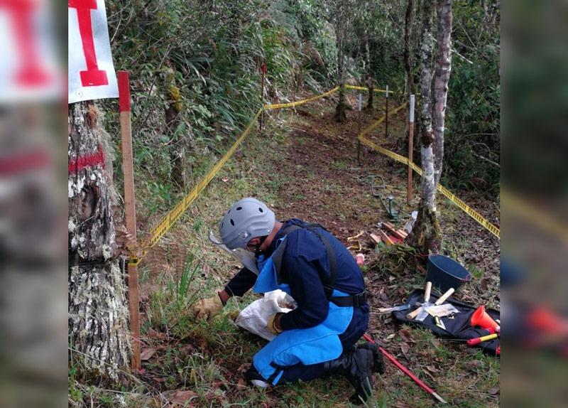 Colombia cerca de lograr meta de liberar a 180 municipios de minas antipersonales