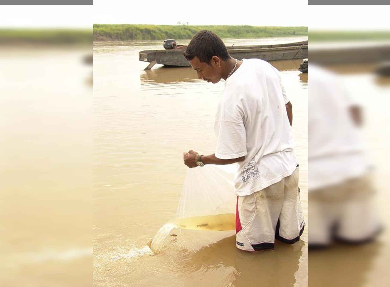 Travesía Naútica por el Cauca: con semillas y peces revitalizarán este afluente