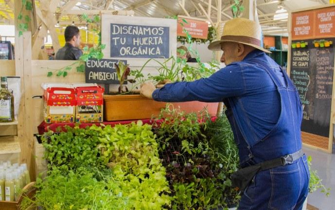 Negocios verdes, apuesta de Colombia para una nueva economía en 2018