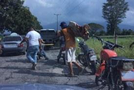 Video: conmoción por venezolanos hambrientos que atacan vaca para alimentarse