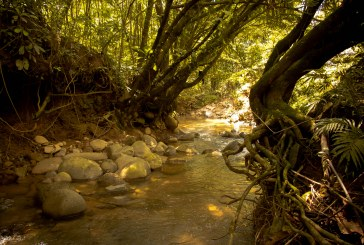 Centro recreativo de Corconá, Antioquia, se trasformará en reserva natural