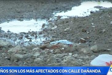 Vecinos de Las Orquídeas denunciaron que vías precarias propician plaga de zancudos