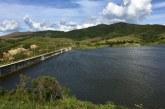 Cvc sembró 15.000 peces en el embalse Guaca, que surte a siete municipios