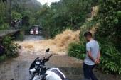 Caída de árboles, congestiones viales y granizo dejó la lluvia este domingo en Cali