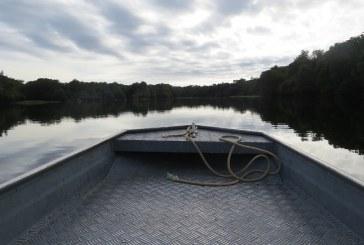 Abierta convocatoria para fotos sobre el Bioma Amazónico