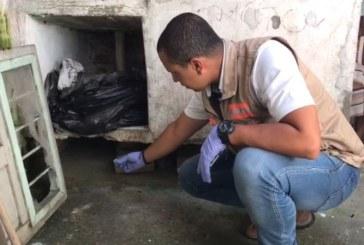 Campañas de exterminio de roedores se realizaron en corregimiento de Sonso, Guacarí