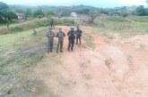 Destruyen minas ilegales que extraían oro en el norte del Cauca