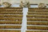 Policía confiscó 1.400 cartuchos en un bus de transporte municipal en el sur del Cauca