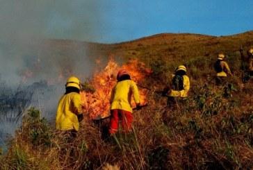 Alerta tras reporte de 58 incendios en 21 municipios del Valle del Cauca