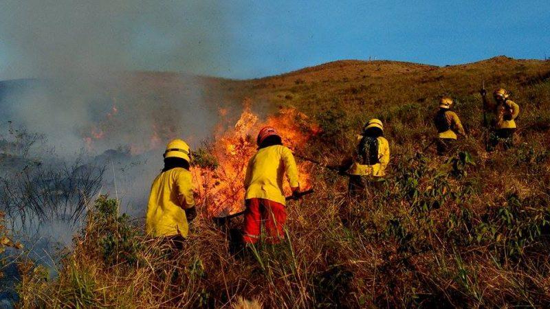Ante fuertes temperaturas en Cali, autoridades trabajan en prevención de incendios forestales