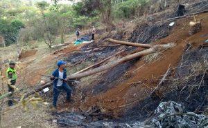 Capturan a 10 personas por intento de invasión y daño ambiental en Altos de Polvorines