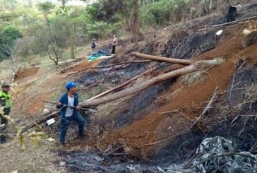 Autoridades retiran a 1.580 personas en zonas protegidas de Cali