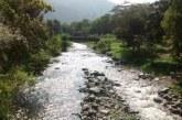 Inició II etapa de reforestación y aislamiento de cuencas en municipios del Valle