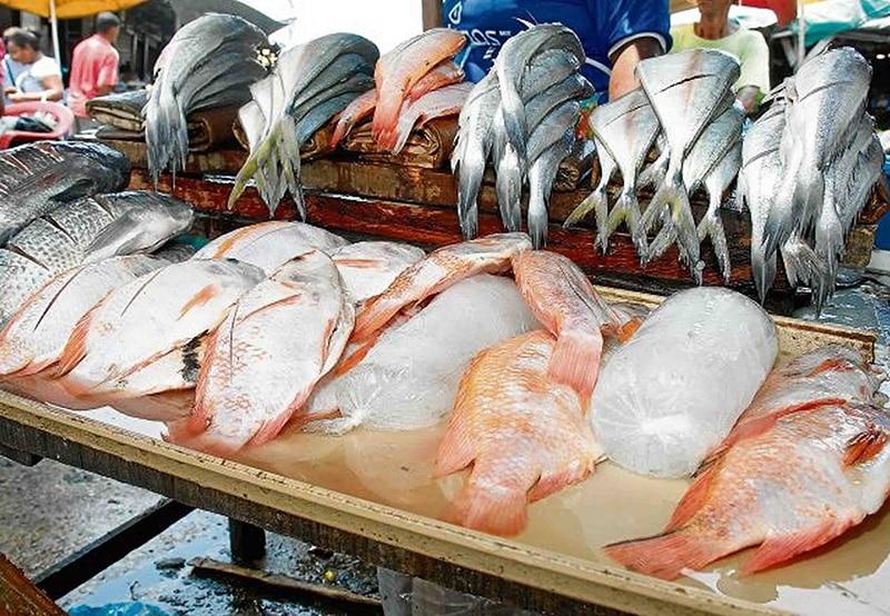 Conozca las recomendaciones de Minsalud para consumo de pescado en semana santa