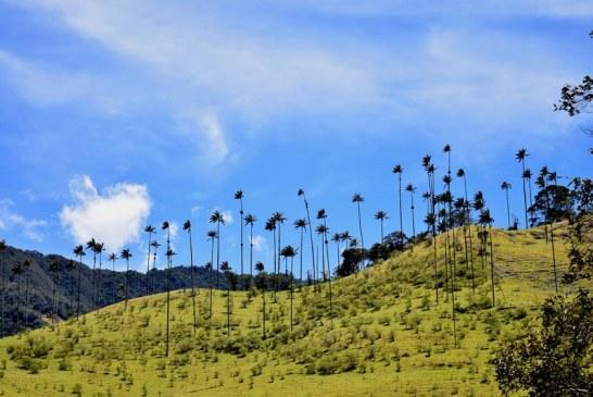 Usted podrá redescubrir Colombia por medio de estos cinco destinos